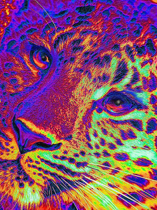 Neon Leopard Print by Jane Schnetlage