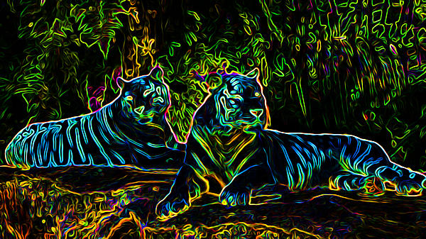 Ron Fleishman - Neon Tigers
