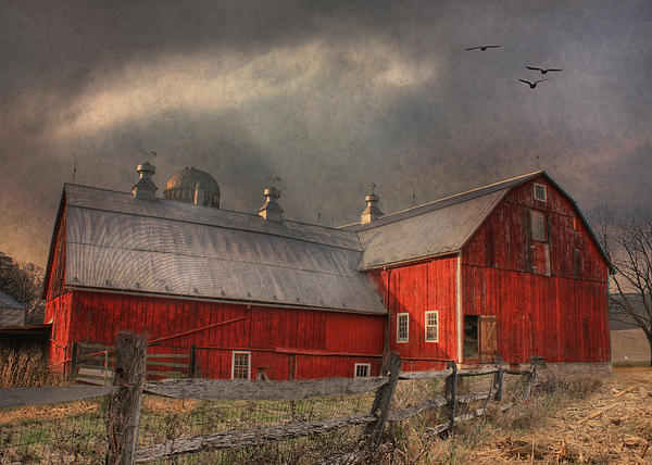 Nescopeck Duck Barn Print by Lori Deiter