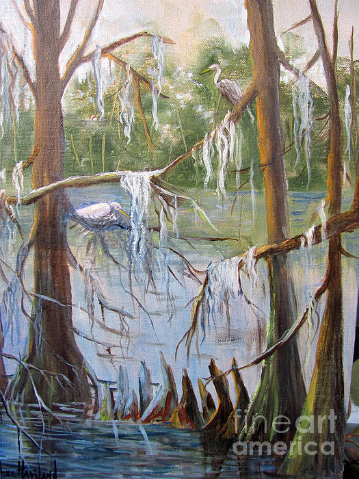 Barbara Haviland - Nesting Egrets at Shangri-La