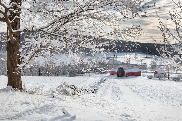 New England Winter Farms Print by Bill  Wakeley