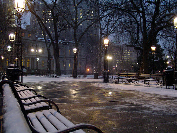 Vadim Levin - New York City Hall Park