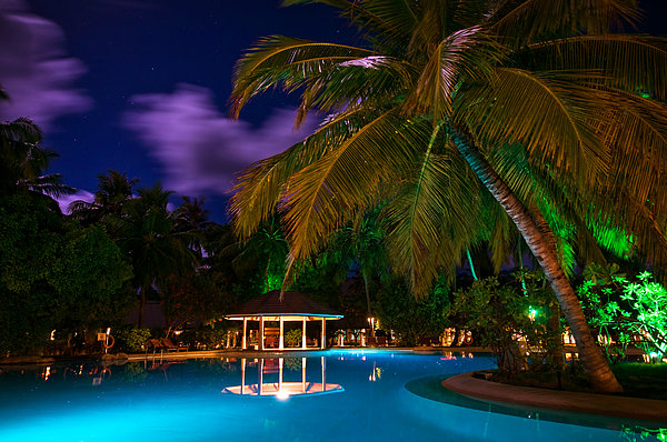 Night At Tropical Resort Print by Jenny Rainbow