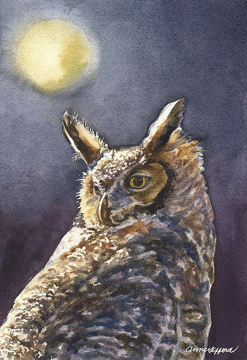 Anne Gifford - Night Owl