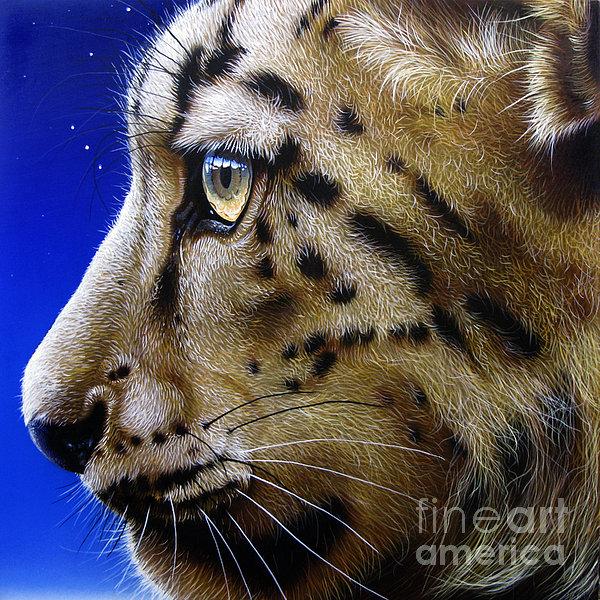 Nina The Snow Leopard Print by Jurek Zamoyski