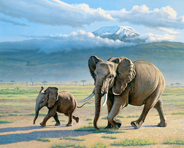 North Of Kilimanjaro Print by Paul Krapf