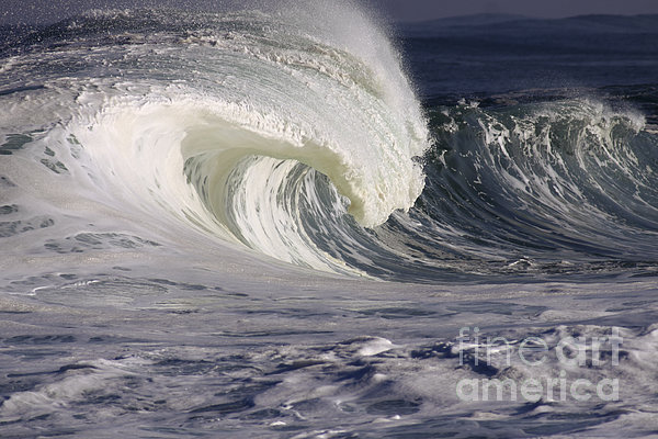 North Shore Wave Curl Print by Vince Cavataio
