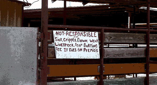 R McLellan - Not Responsible