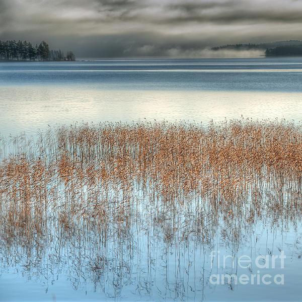 November Lake Print by Ari Salmela