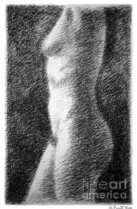 Nude Female Torso Drawings 6 Print by Gordon Punt