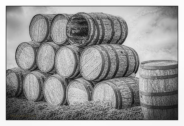 LeeAnn McLaneGoetz McLaneGoetzStudioLLCcom - Oak Wine Barrels Black and white