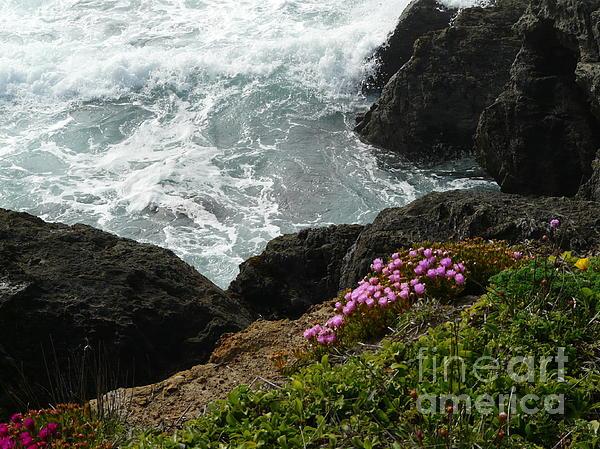 Ocean Wildflowers-2 Print by Avis  Noelle