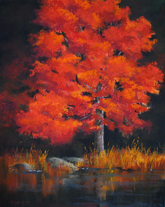 Christine Hodecker-George - October Maple
