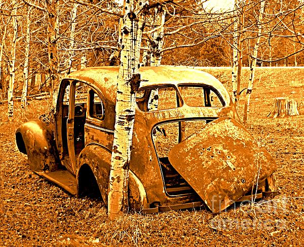 Ol Car Backside Print by Barbara Henry