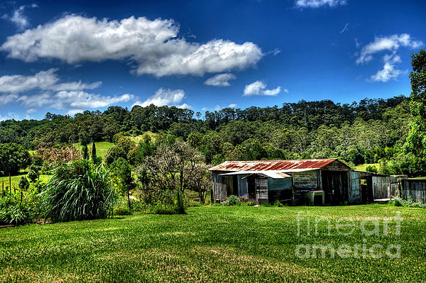 Old Barn In Lush Green Countryside Print by Kaye Menner