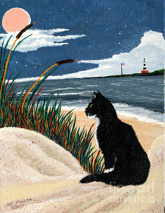 Old Cat And The Sea Print by Edward Fuller