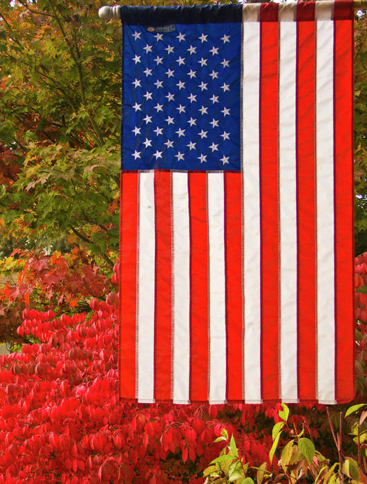 Old Glory Print by Ron Roberts