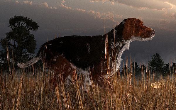 Old Hunting Dog Print by Daniel Eskridge