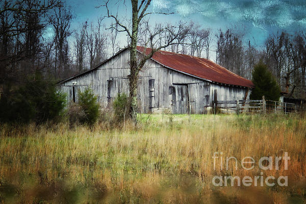 Old Wooden Barn Print by Betty LaRue