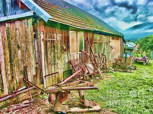 Old Wooden Shed Print by Roman Milert