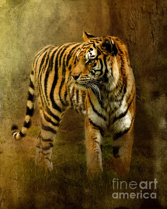 On The Hunt Print by Betty LaRue
