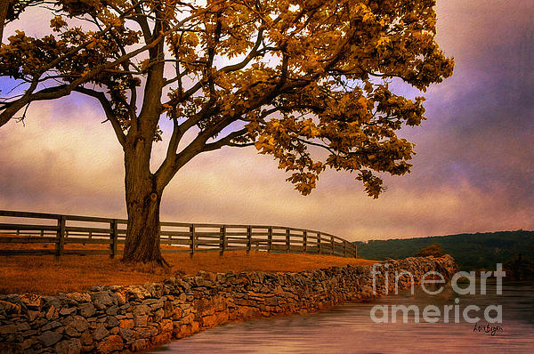 One Tree Hill Print by Lois Bryan