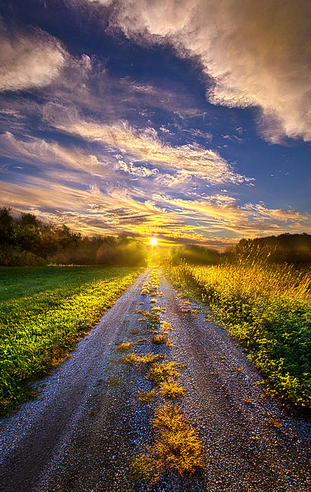 Phil Koch - Onward the Traveler Goes