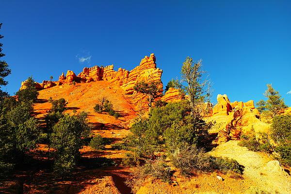 Orange Foreground A Blue Blue Sky  Print by Jeff  Swan