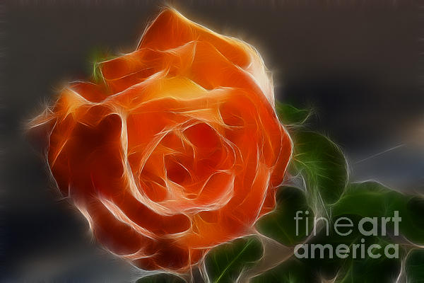 Orange Rose 6220-fractal Print by Gary Gingrich Galleries