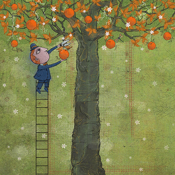 Oranges And Dragonfly Two Print by Dennis Wunsch