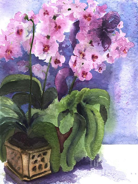 Maria Hunt - Orchids in the Window