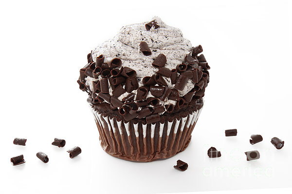 Andee Photography - Oreo Cookie Cupcake