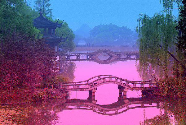 Oriental Bridge Print by Larry Moloney