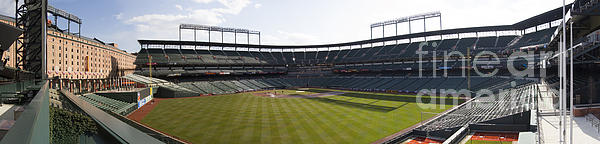 Oriole Park At Camden Yards Print by Darleen Stry