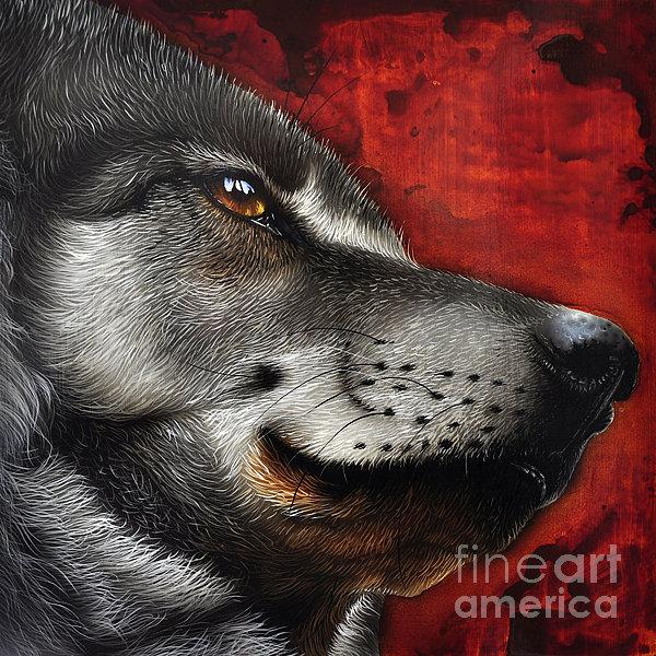 Orion Wolf Print by Jurek Zamoyski