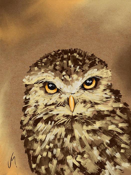 Veronica Minozzi - Owl