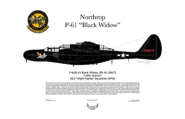 P-61b Black Widow Print by Arthur Eggers