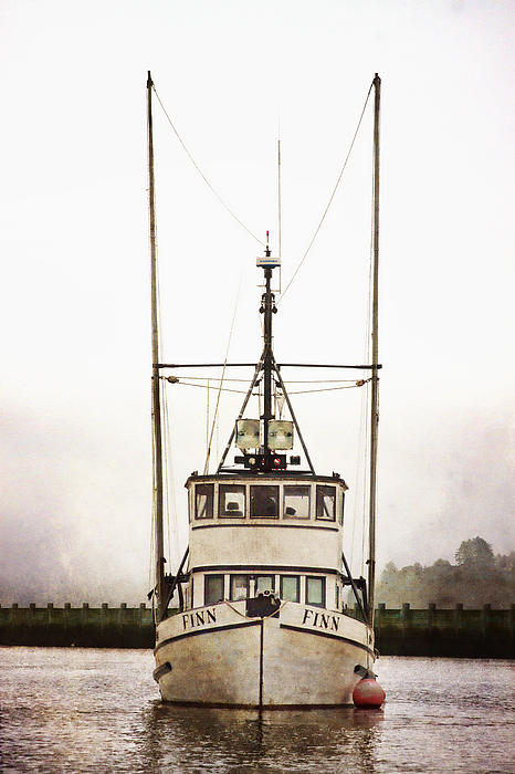 Pacific Northwest Morning Print by Carol Leigh