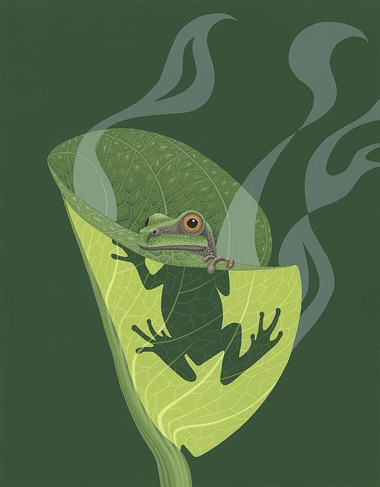 Pacific Tree Frog In Skunk Cabbage Print by Nathan Marcy