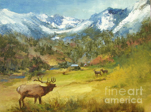Joanne Hall - Pagosa Mountain Meadow