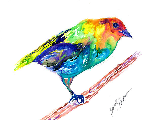 Beverly Bronson - Painted Bunting