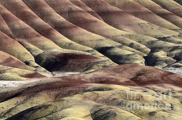 Painted Hills Oregon 11 Print by Bob Christopher