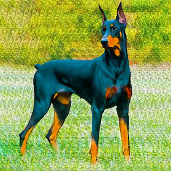 Painting Doberman Pincher Print by  Bob and Nadine Johnston