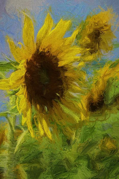Cathy Lindsey - Painty Sunflower