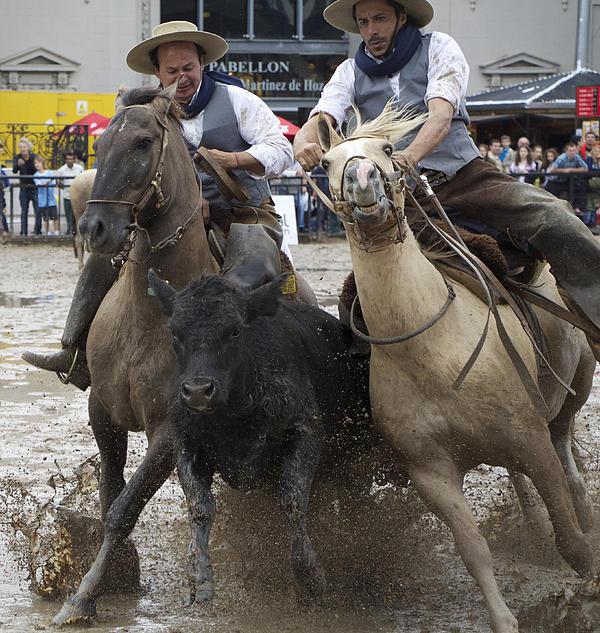 Venetia Featherstone-Witty - Paleteada with Criollo Horses