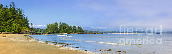 Panorama Of Pacific Coast On Vancouver Island Print by Elena Elisseeva