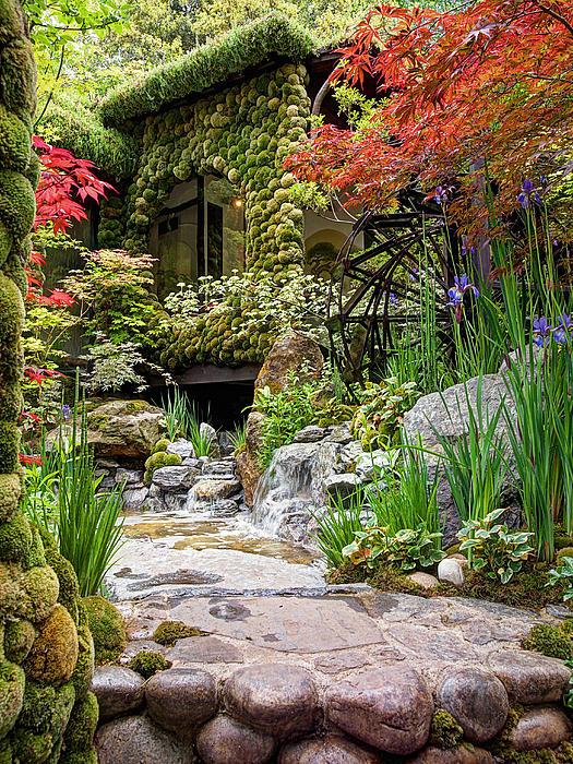 Japanese Garden 2 Print By Gill Billington