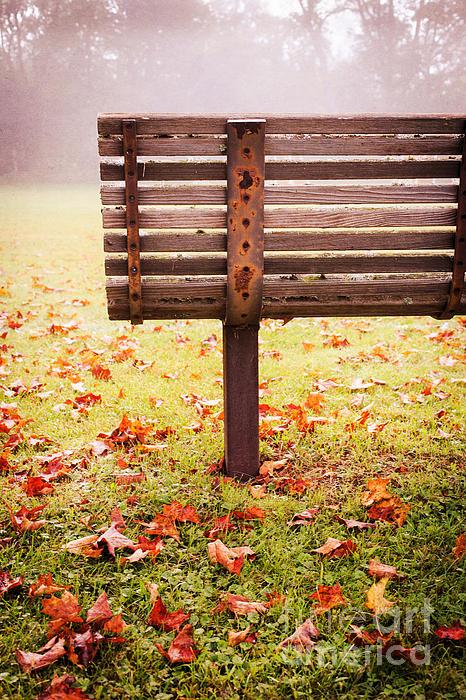 Park Bench In Autumn Print by Edward Fielding