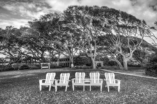 Park Under The Oaks Print by Debra and Dave Vanderlaan