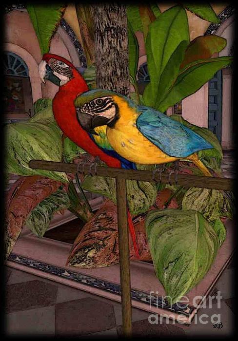 Susanne Baumann - Parrots2